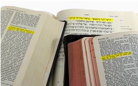 Into How Many Languages Has the Bible Been Translated?