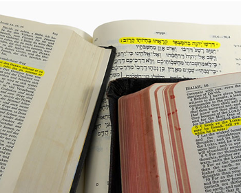 bible into many languages